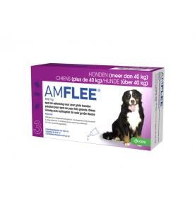 Amflee 402 mg  (40 t/m 60 kg) 3 pip