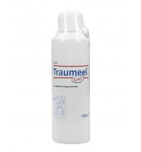 Traumeel S Gel 250 gram