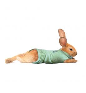 Medical Pet Shirt (Konijn)