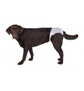 Vetlando Hondenluier