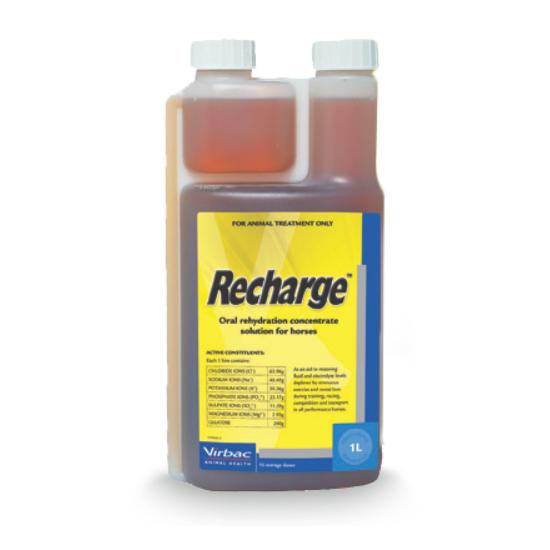 Recharge - 1 liter
